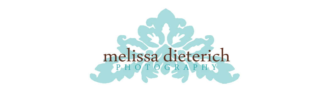 Melissa Dieterich Photography Blog Fort Worth/Dallas Texas maternity, newborn, baby, and children photographer. logo