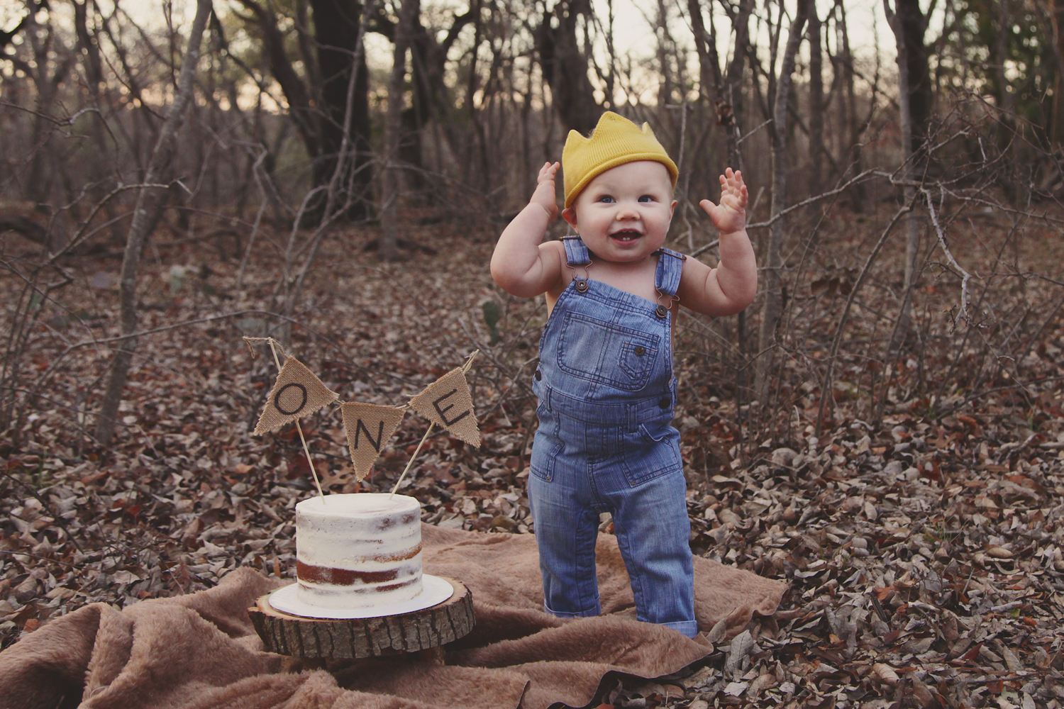 Fort Worth Baby Photographer Cake Smash Wild One
