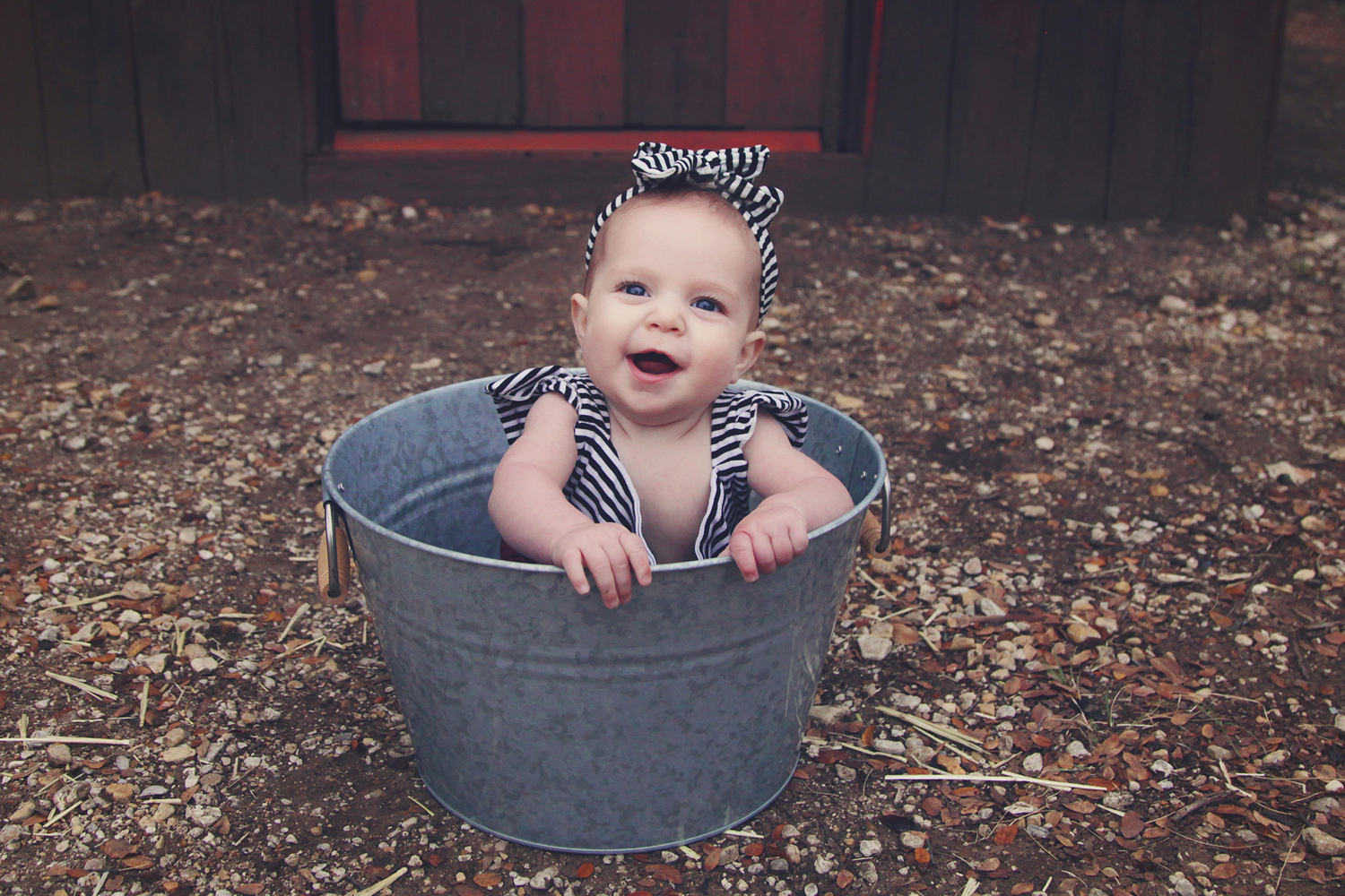Fort Worth Baby Photographer baby in bucket