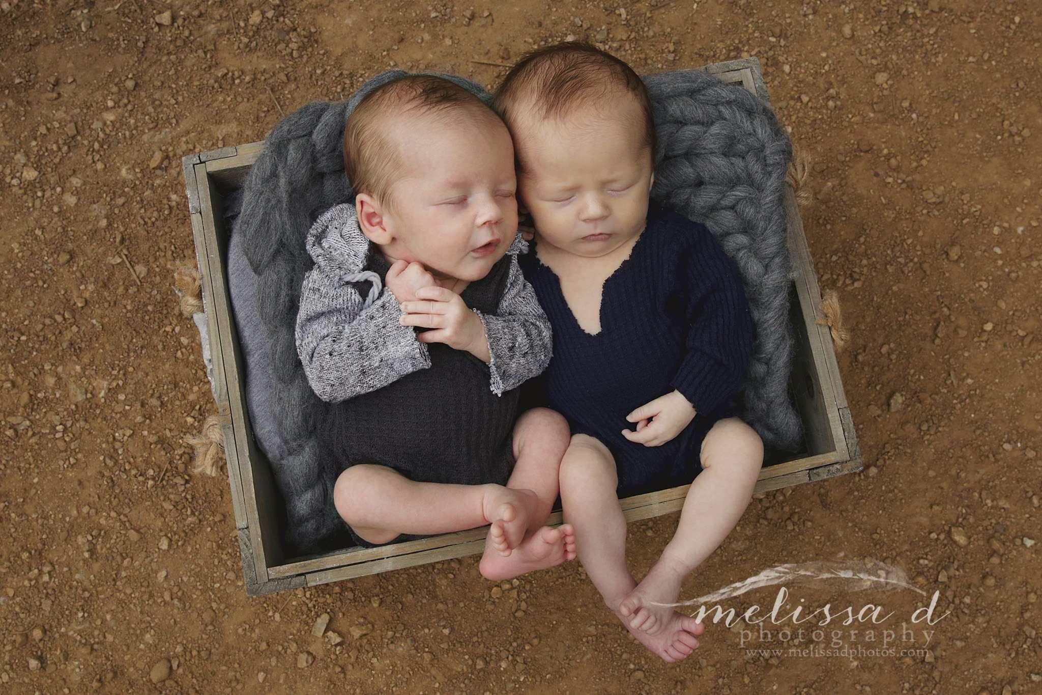 Mansfield Newborn Photographer